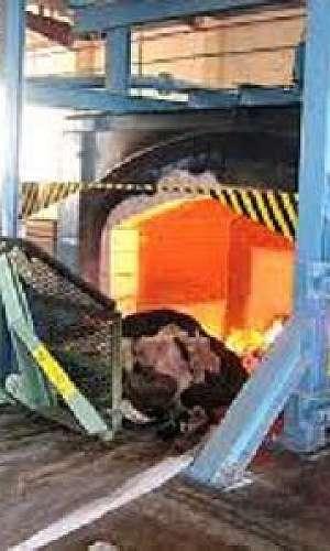 Incineração de resíduos industriais e hospitalares
